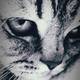 Аватар пользователя Hronor1980