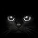 Аватар пользователя nikus71