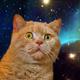 Аватар пользователя JordanBruks