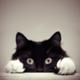 Аватар пользователя Grameth