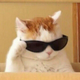 Аватар пользователя XiaoMa0