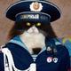Аватар пользователя rdpk
