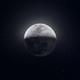Аватар пользователя DieFox