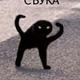 Аватар пользователя TvoyPesduk