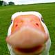Аватар пользователя GooMer83