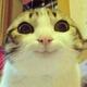 Аватар пользователя Olle774