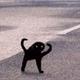 Аватар пользователя Dreadevil