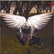 Аватар пользователя MasterDenn