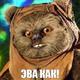 Аватар пользователя kfati