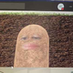 Аватар пользователя papayka