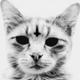 Аватар пользователя Ungoliant666