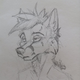 Аватар пользователя DetrixRay