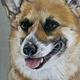 Аватар пользователя Tanchik93