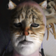 Аватар пользователя ShivvaRudra