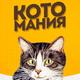 Аватар пользователя Kotomaniavpikabu