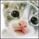 Аватар пользователя 7Aleksey7