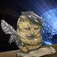 Аватар пользователя Cat.News