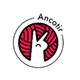 Аватар пользователя Ancotir.science