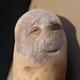 Аватар пользователя Modik