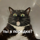 Аватар пользователя Zaharia13