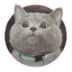 Аватар пользователя COJIHE4HA9I