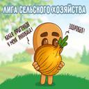 """Аватар сообщества """"Лига Сельского хозяйства"""""""