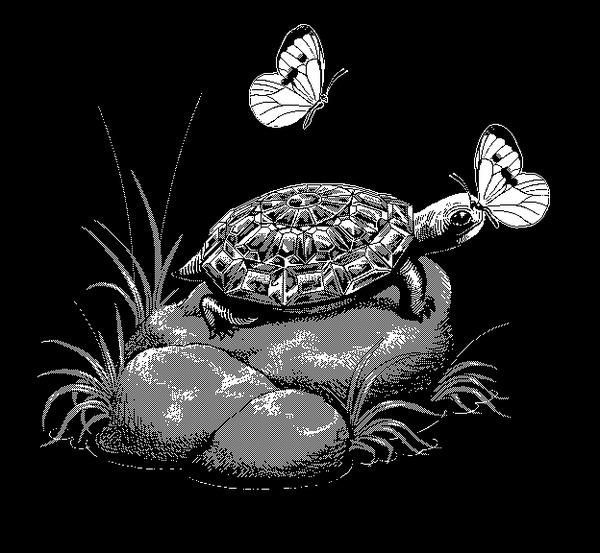 Алмазная черепашка