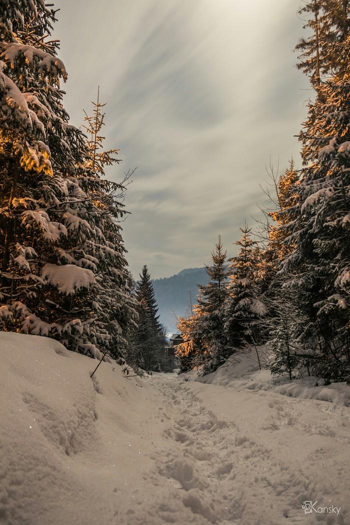 Зимние Карпаты Фотография, Ночная съемка, Карпаты, Зима, Небо, Елки, Длиннопост