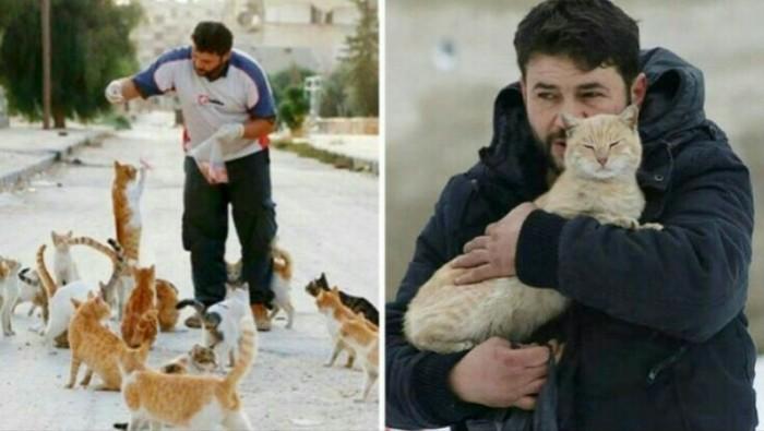 Сириец остался в покинутом Алеппо, чтобы заботиться о кошках Алеппо, Сирия, Кот, Животные, Домашние животные, Помощь животным, Лига Добра, Фотография