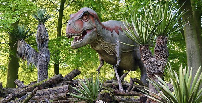 «Люди воевали с динозаврами»: Экс-премьер Польши поделилась историческими познаниями Общество, Польша, История, Юмор, Пятый Канал, Флинстоуны, Социальные сети, Видео, Длиннопост, Динозавры