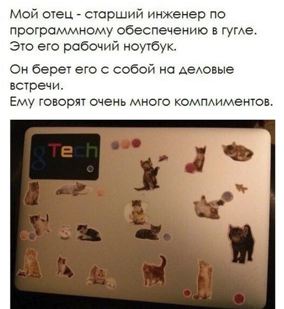 Ноутбук Куклачёва? Кот, Ноутбук, Наклейка, Вконтакте, Google, Инженер