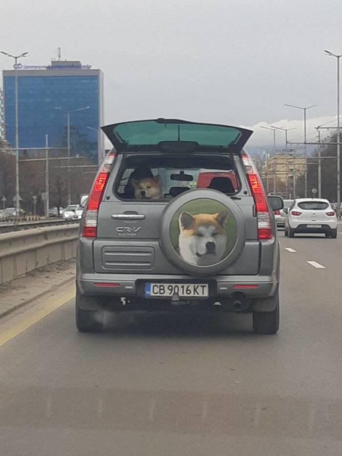 Личный автомобиль