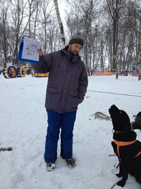 Собака-считака Собака, Дрессировка собак, Математика, Математический анализ, Лабрадор