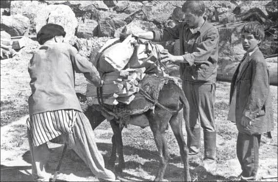 Под перекрестным огнем засады.Ч.2. Афганистан, СССР, Военные мемуары, Длиннопост