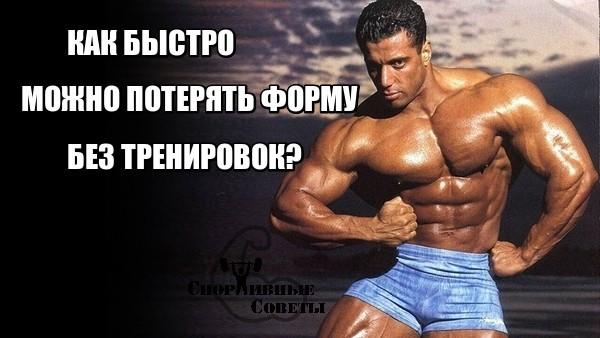 Как быстро можно потерять форму без тренировок? Спорт, Тренер, Спортивные советы, Тренировка, Прогресс, Исследование, Кардио, ЗОЖ, Длиннопост