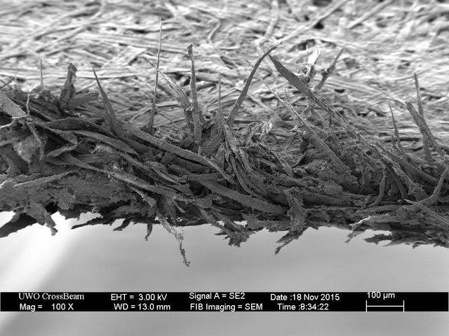 Вот как выглядит край листа бумаги под микроскопом