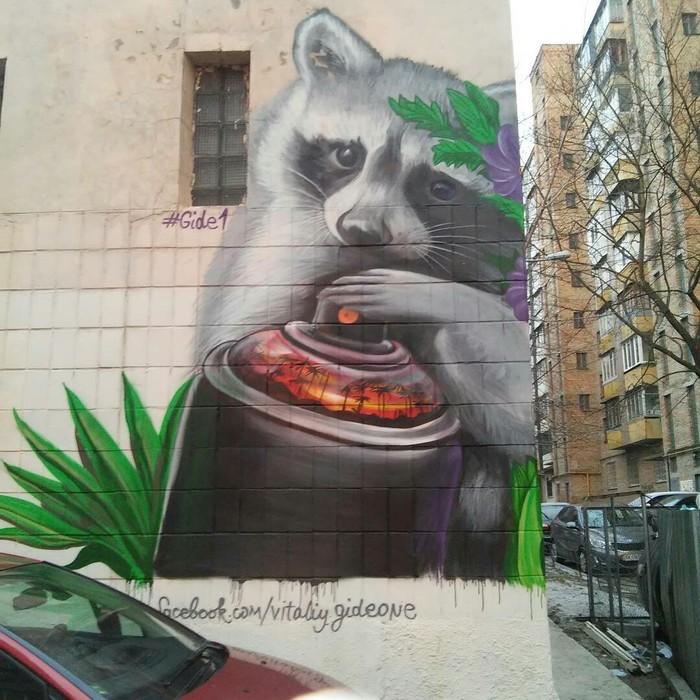 Граффити Граффити, Енот, Милота, Рисунок, Улица, Стрит-Арт