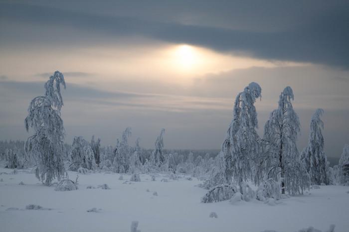 Красивая зима в Пермском крае Зима, Мороз, Урал, Зимний лес, Закат, Пермский край, Длиннопост, Фотография