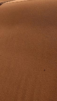 Дюна в Сахаре