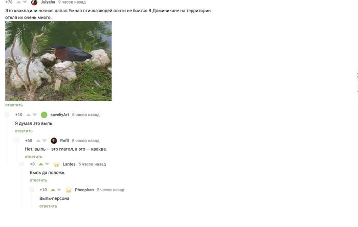 КОММЕНТАРИИ Комментарии на Пикабу, Юмор, Скриншот