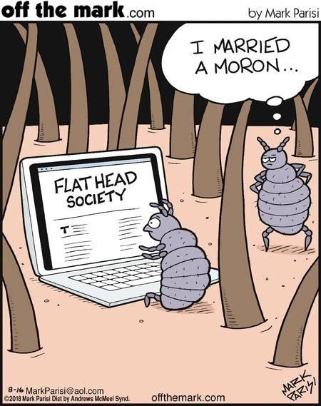 А что если голова на самом деле плоская? Комиксы, Вши, Семейная жизнь, Плоская земля, Offthemark