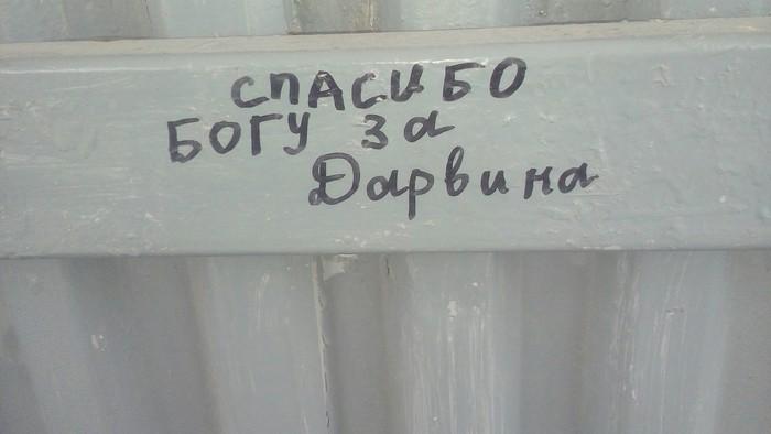 """""""Благодарность"""" на автобусной остановке"""