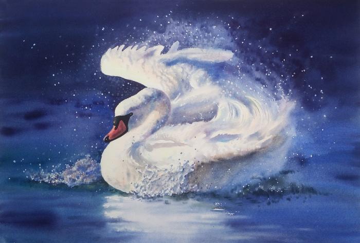 А белый лебедь на пруду... Акварель.