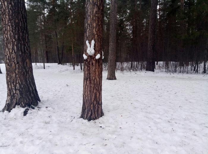 И опять Пермь. Заяц застрял Застрял, Лес, Заяц, Длиннопост