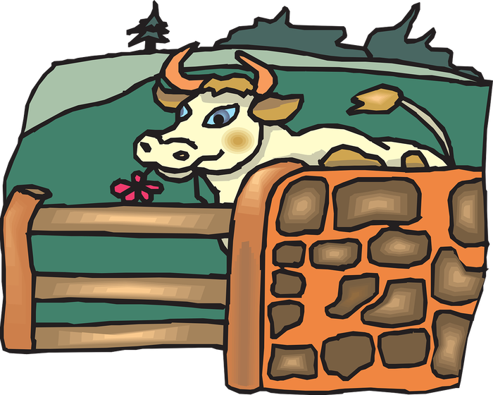 Сколько кормов и на какую сумму съедает в год 1 молочная корова? Длиннопост, Ферма, Молоко, Корова, Доярка, Начинающий фермер, Проект фермы, Строим ферму, Видео