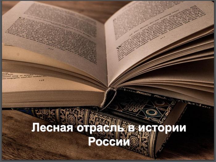 Что происходило с лесом в истории России Лес, Экономика, Петр 1, Сталин, Матвиенко, История, Длиннопост