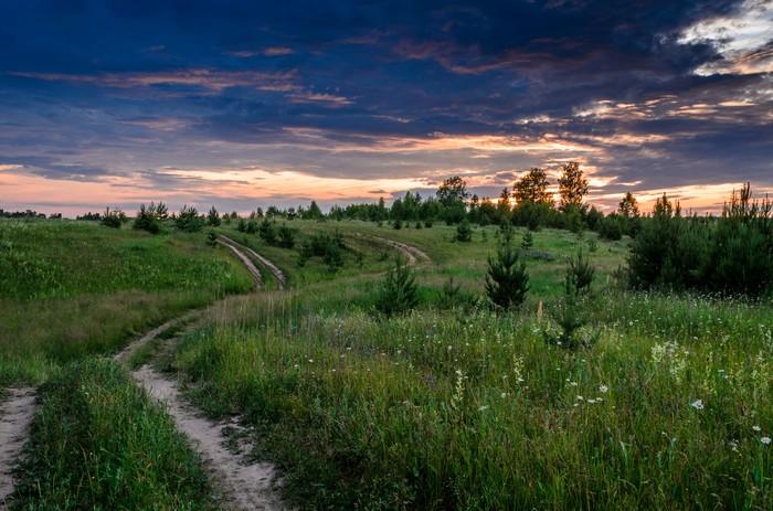 Лето в деревне 2 Nikon, Природа, Пейзаж, Лето, Деревня, Nikon d5100, Фотография