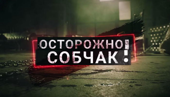 Ксения Собчак или Лошадь Апокалипсиса. Шутошное, без юмора. Общество, Политика, Собчак, Выборы, Длиннопост