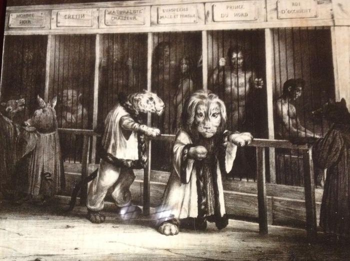 Человеческий зоопарк Зоопарк, Эксперимент, Деньги, Илон Маск, Reddit, Askreddit, Перевод, Длиннопост