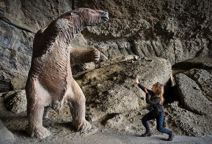 Стойло для милодона? Палеонтология, Окаменелости, Млекопитающие, Южная Америка, Чили, Животные, Длиннопост, Копипаста, Интересное